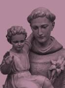 Información del Vaticano y de las Diócesis españolas