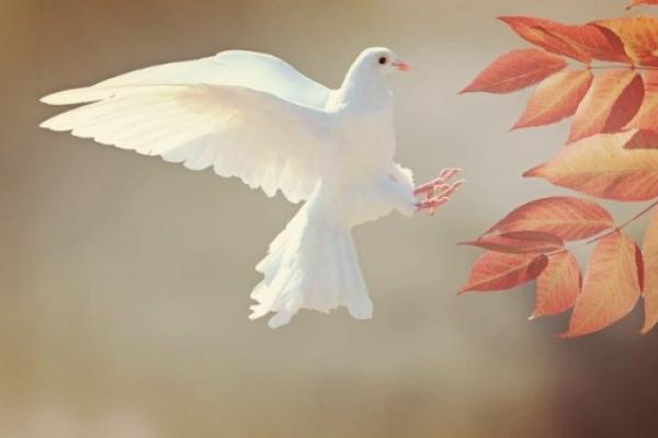 Décima asamblea mundial de religiones por la paz en Lindau