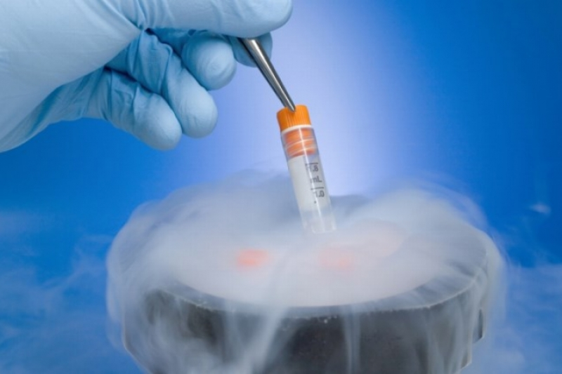 El negocio de la congelación de óvulos