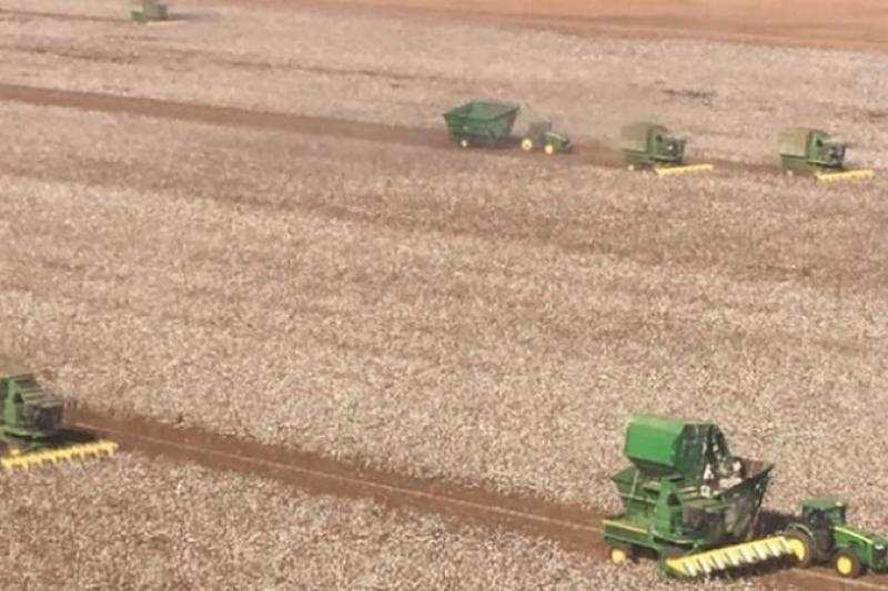 Los vecinos de un granjero enfermo se unen para recoger su cosecha. Historias que inspiran