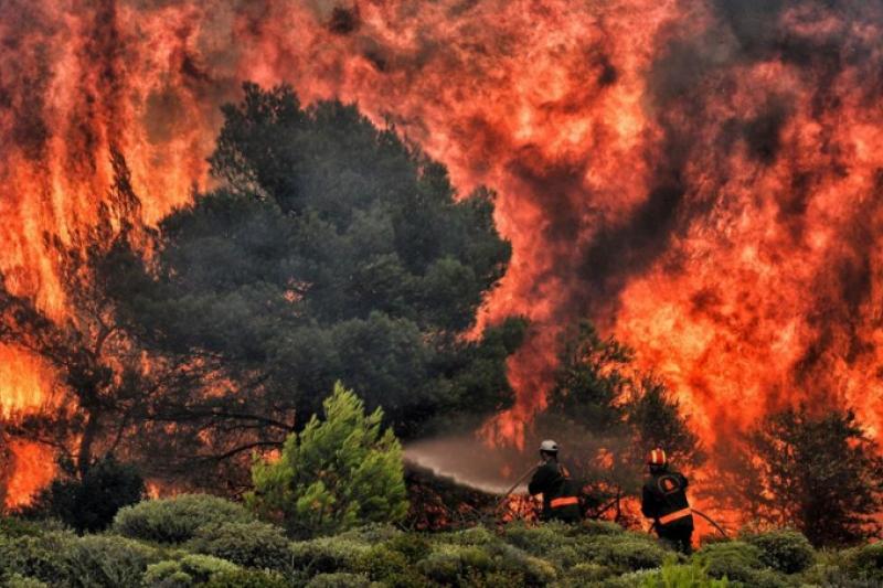 Telegrama del Papa Francisco tras los terribles incendios de Grecia