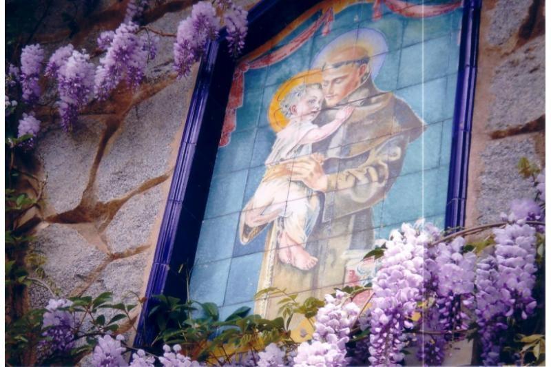 Los trece Martes a San Antonio de Padua. Martes 5º:  La longanimidad