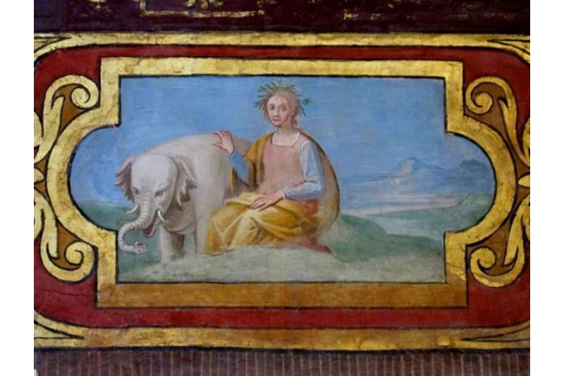 Annone, el elefante albino que vivió 2 años en el Vaticano