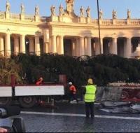 El tradicional árbol de Navidad llega al Vaticano