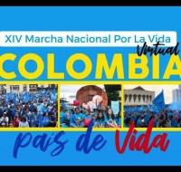 Gran éxito de la XIV marcha nacional por la vida en Colombia