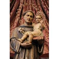 San Antonio de Padua. En la Basílica de Padua, Italia